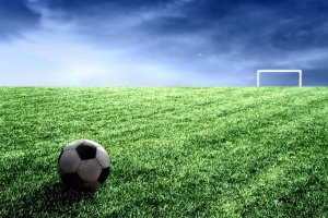 235478__bliss-soccer-field_p