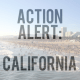 SOL Action Alert in California