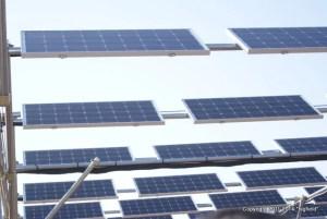 ソーラーシェアリングの太陽光パネル