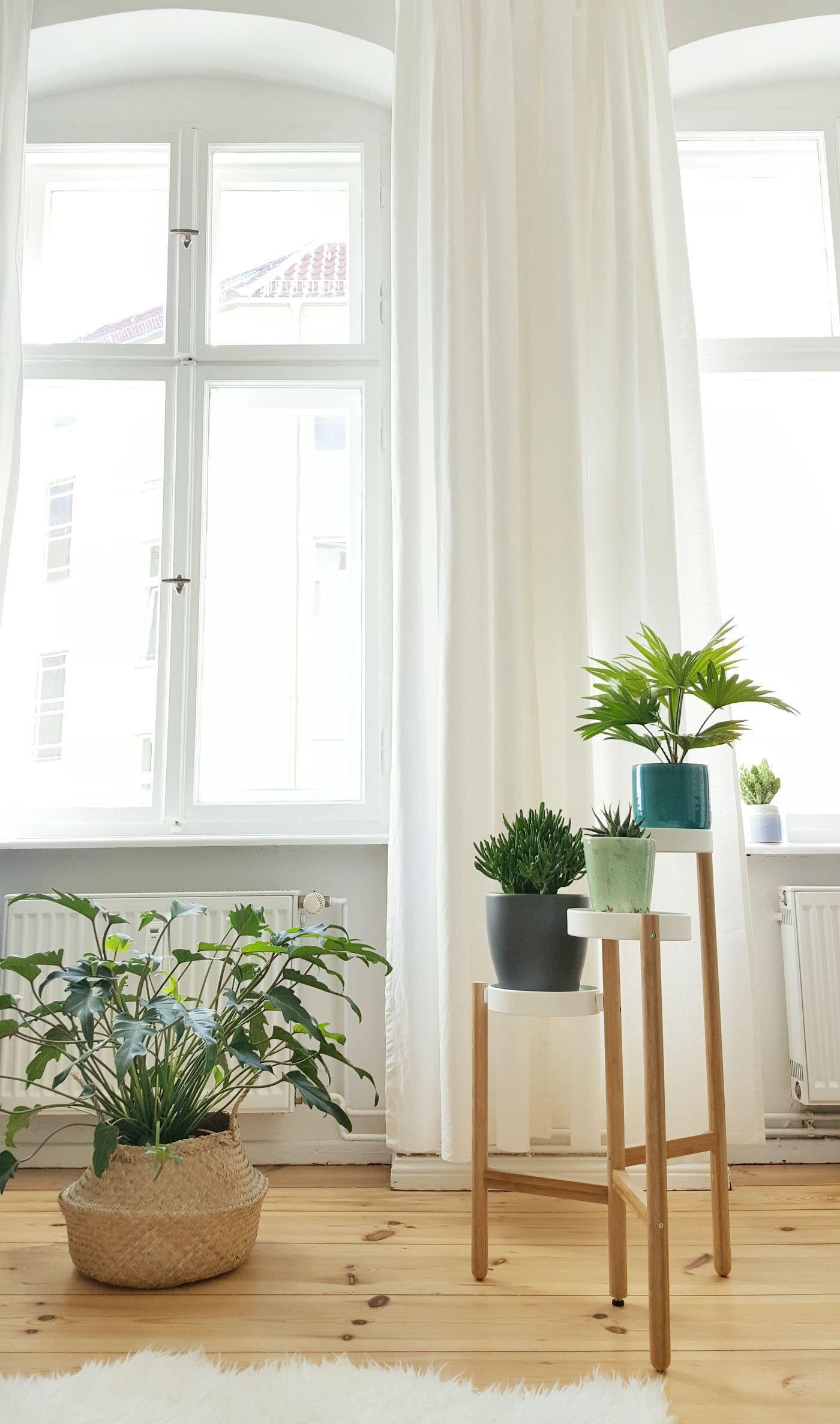 Zimmerpflanzen Schlafzimmer | Room Tour Wg Zimmer Möbel And Deko ...
