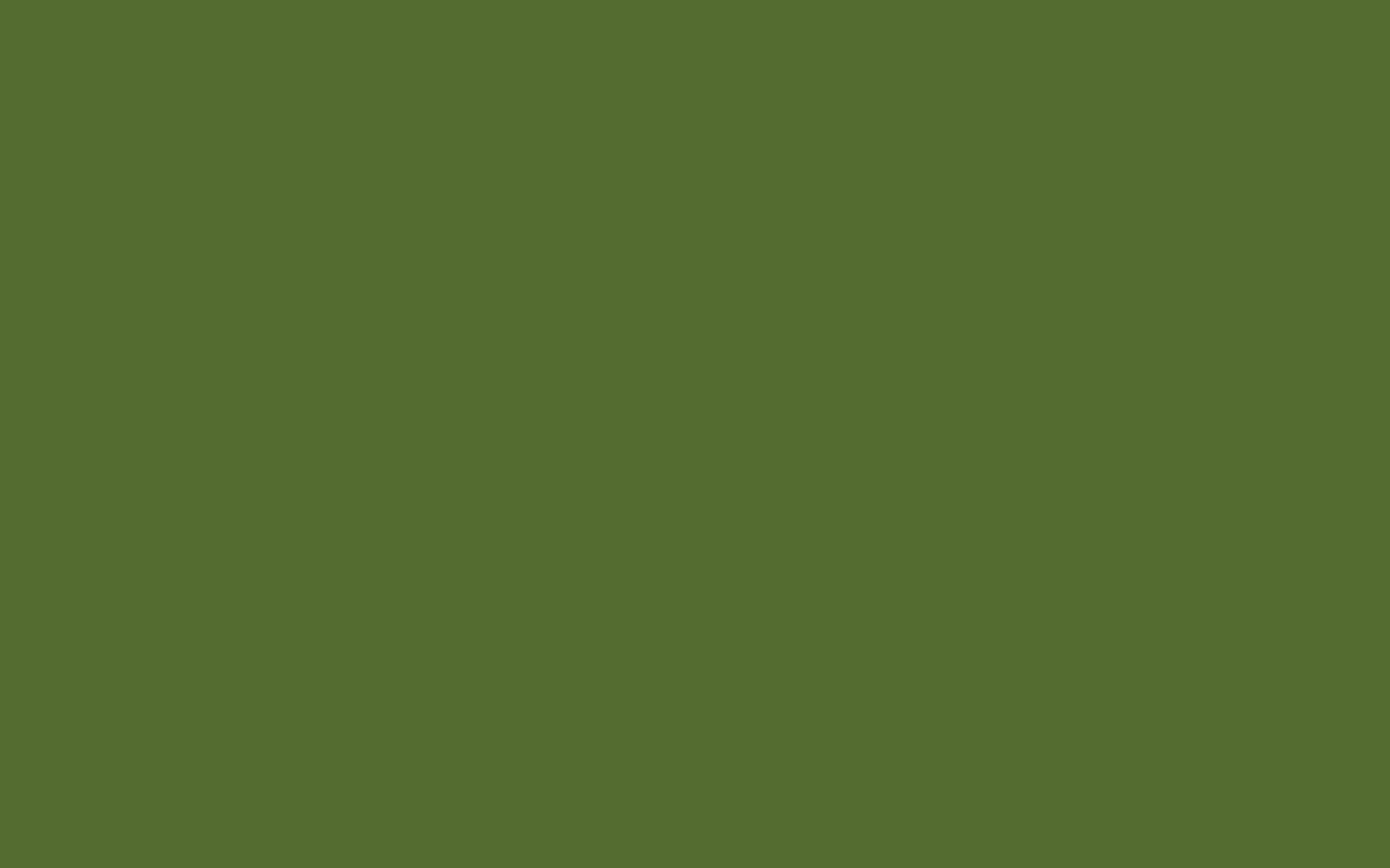 Couleur Vert Olive Clair 2880x1800 Dark Olive Green Solid Color Background