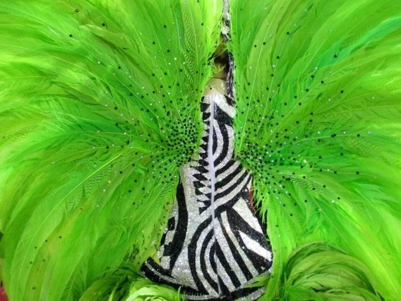 A Carnival Costume from São Paulo, Brazil