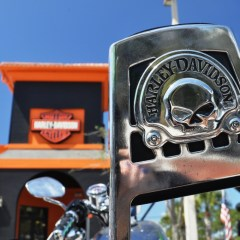 Fulfill the Dream at Bert's Black Widow Harley-Davidson in Port Charlotte, Florida