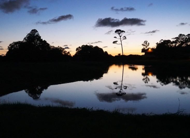 Gorgeous Sunset at Innisbrook Resort, Palm Harbor, Florida.