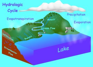Water Cycle Works