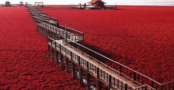Façam piada com suas xarás: a verdadeira Praia Vermelha é aqui