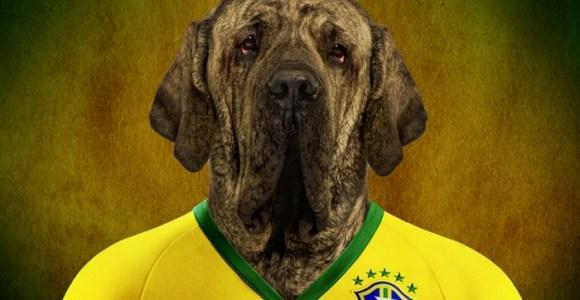 Como seriam as figurinhas da Copa com cães de cada país no lugar dos jogadores