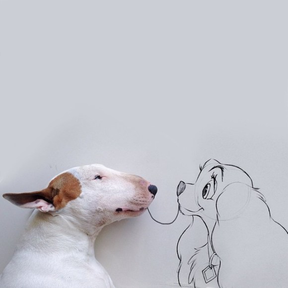 Cães e desenhos (5)