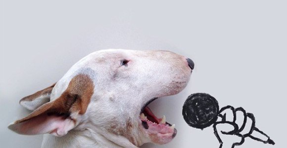 Brasileiro usa habilidades no desenho para colocar seu cão em situações inusitadas