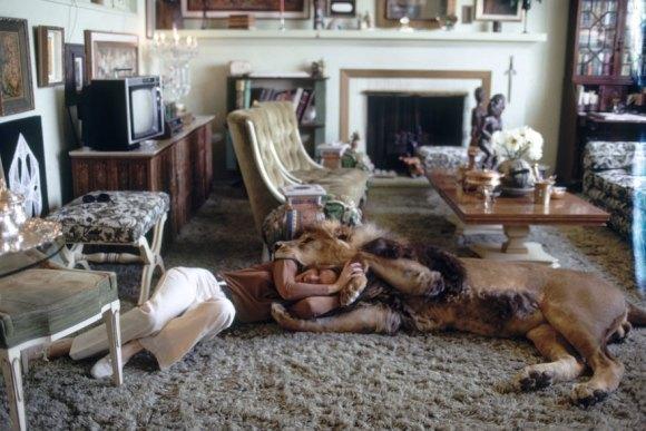 Vivendo com um Leão (5)