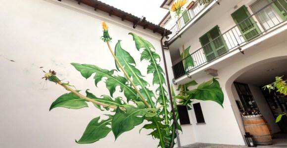 Com stop motion e grafite, artista faz ervas florescerem nos muros das cidades