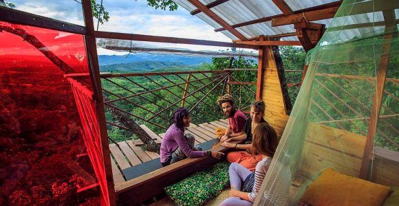 10 casas na árvore para você se hospedar pelo mundo, 3 delas aqui no Brasil!
