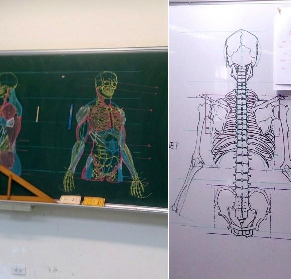 Desenhos de anatomia 8