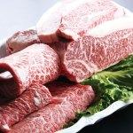 ふるさと納税で人気の牛肉おすすめブランド牛7選!