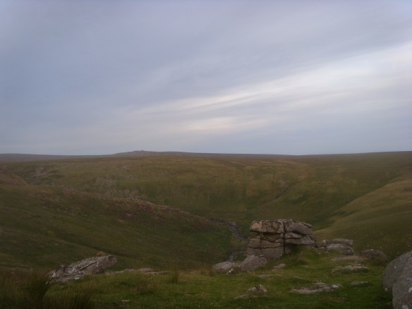 Fur Tor from above Tavy