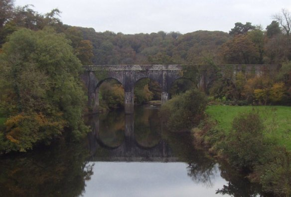 owlery-holt-river-torridge-something-about-dartmoor