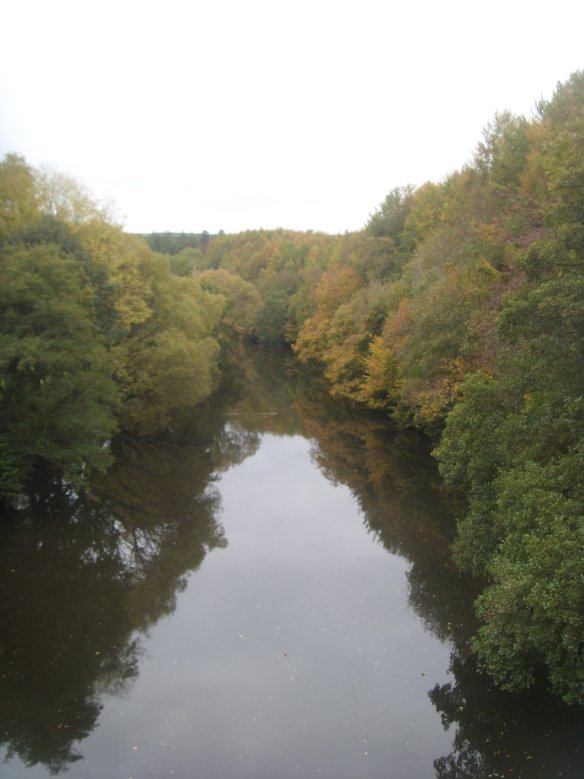 river-torridge-from-the-tarka-trail-near-torrington-something-about-dartmoor