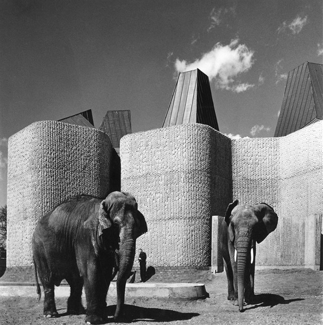 Elephant & Rhino House, London Zoo (via RIBA)