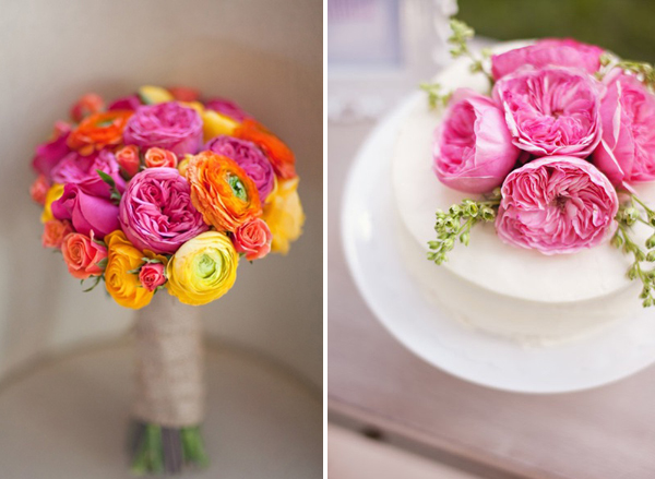 hot pink cabbage rose