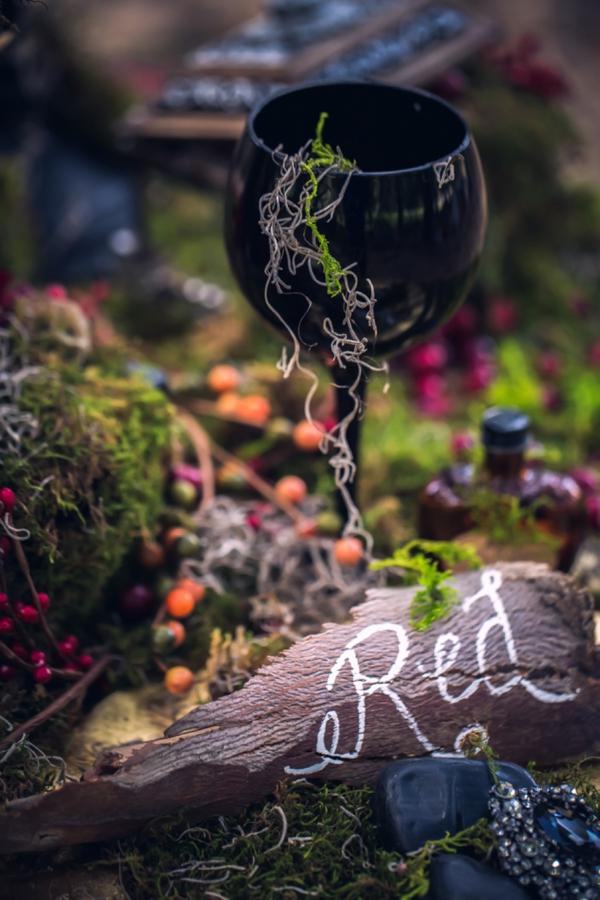 SomethingTurquoise-Red-Riding-Hood-Noir-Nerinna-Studios_0017.jpg