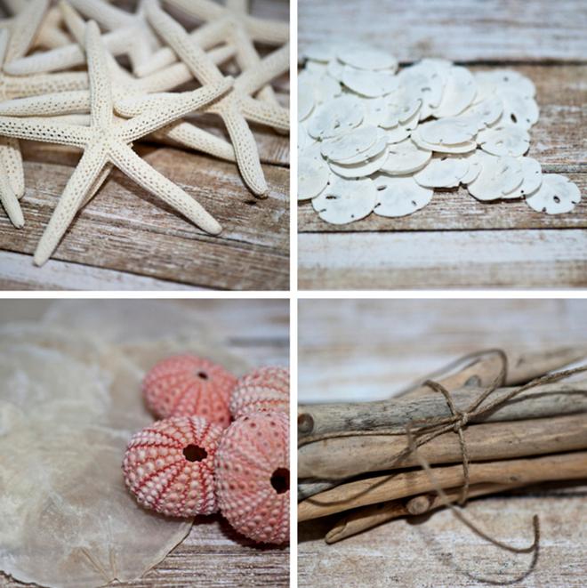 Bulk seashell supplies from CereusArt