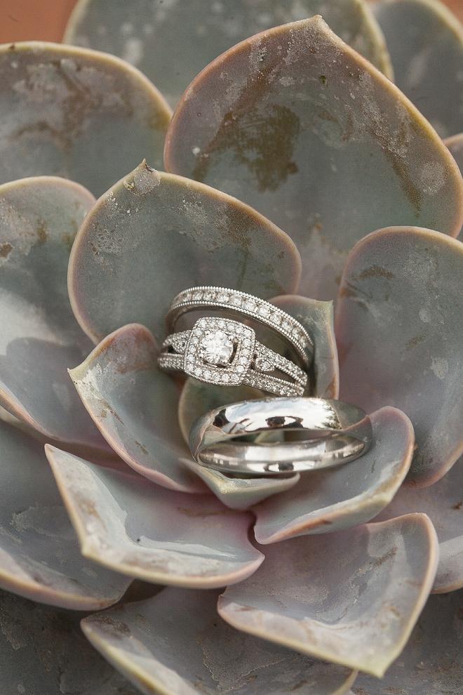 LOVE this ring shot!