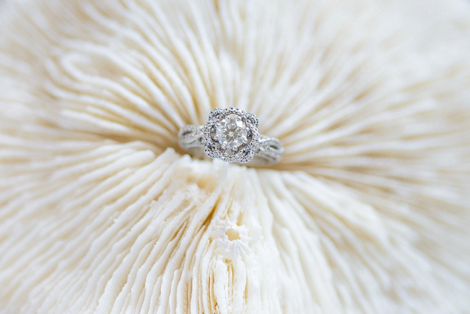 We LOVE this stunning ring shot!!