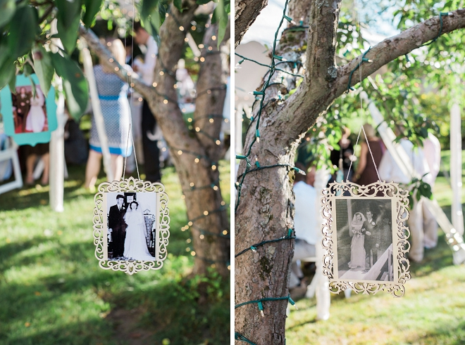 We love this family tree full of family wedding photos!