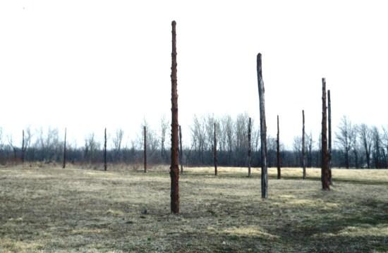 Cahokia wood henge