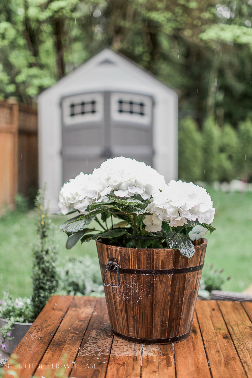 Outdoor Planters Near Me The Best Tip For Filling Large Outdoor Planters So Much Better