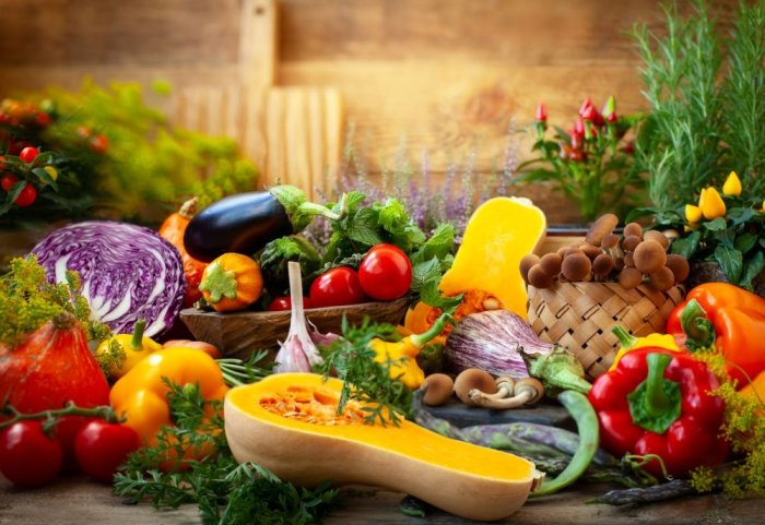 Ernährungskurse
