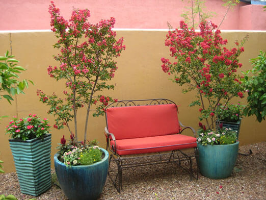 About Us | The Contained Gardener Tucson, Az | Sonoran Gardens Inc.