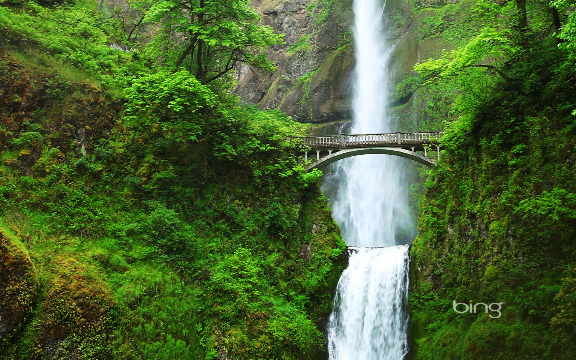 Wallpapers Gallery Falls Multnomah Falls And Benson Bridge Oregon 169 Getty Images