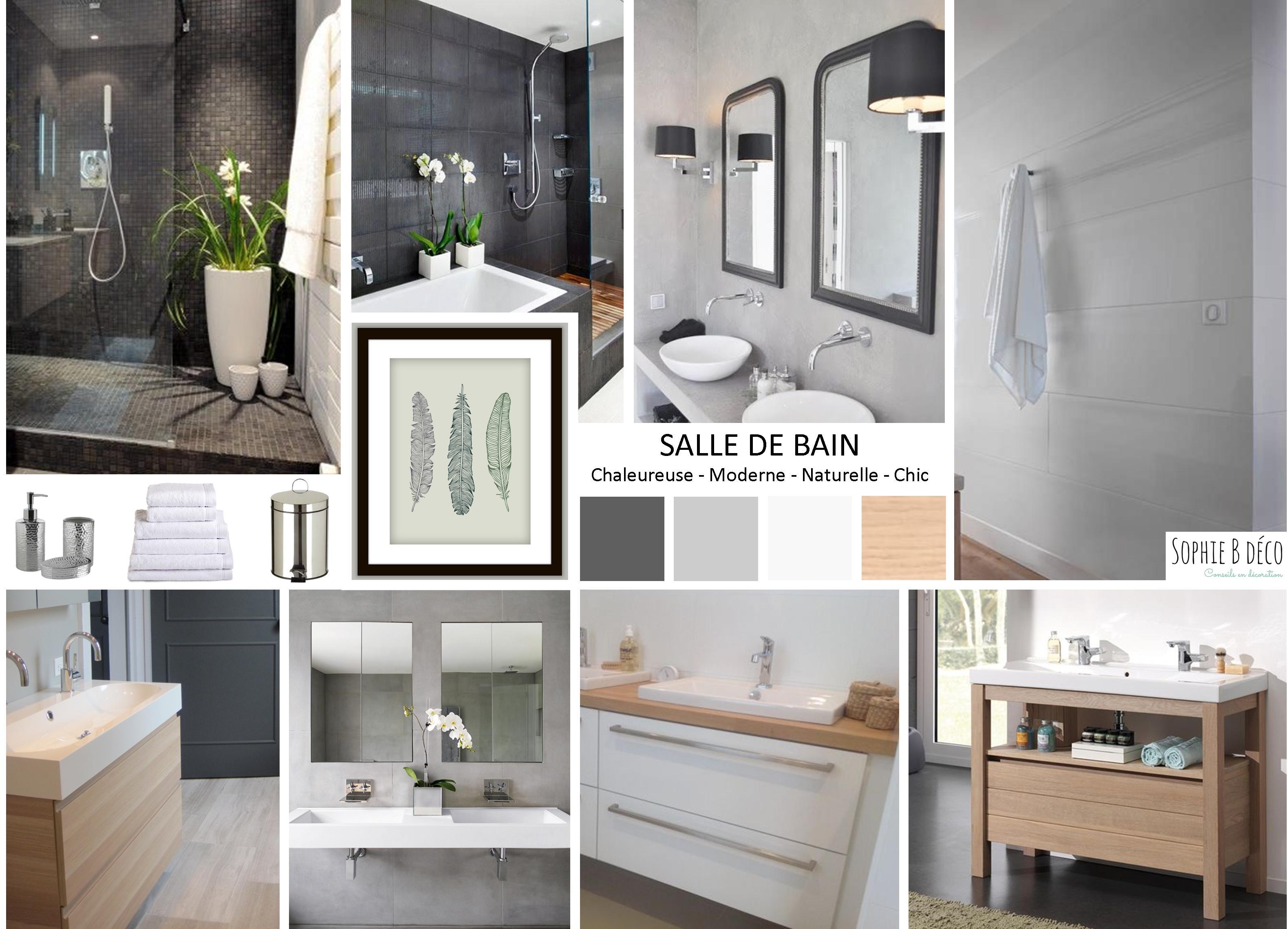 Salle De Bain Gris Et Vert   Couleur Taupe Idee Decoration Pour ...