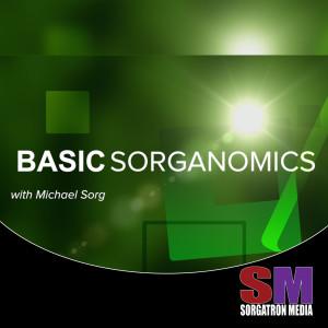 Basic Sorganomics