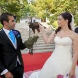 aves en tu boda