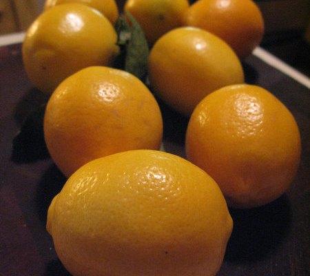 Meyer Lemon Sidecars