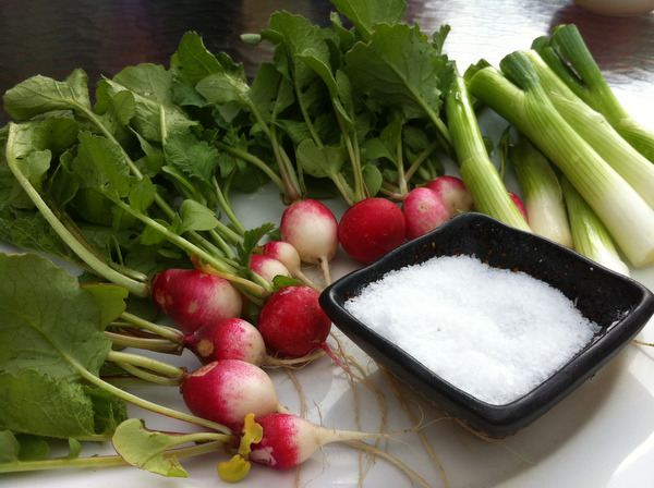 First Harvest of 2013: Radishes For Mother's Day Supper
