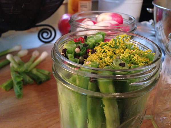 Pickling Radishes and Spring Onions