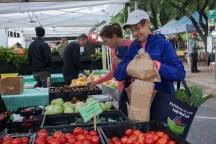 Austin Farmer's Market | Austin, TX