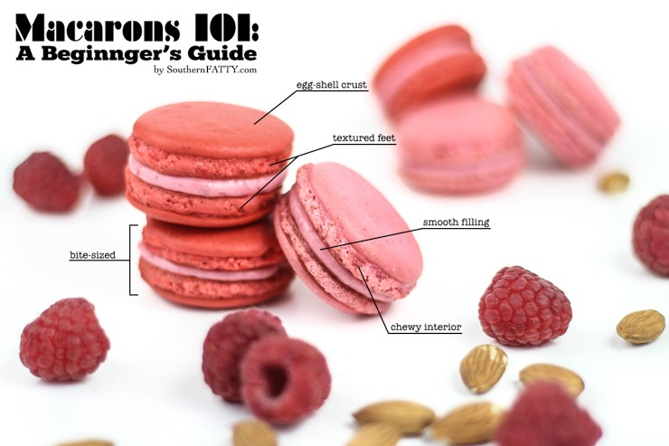 Macarons 101 A Beginner\u0027s Guide and Printable Piping Template
