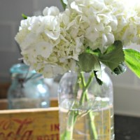 How to Perk Up Wilted Hydrangeas