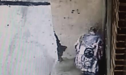 Video: Monta una ducha para joder a los que le mean el rincón de su casa