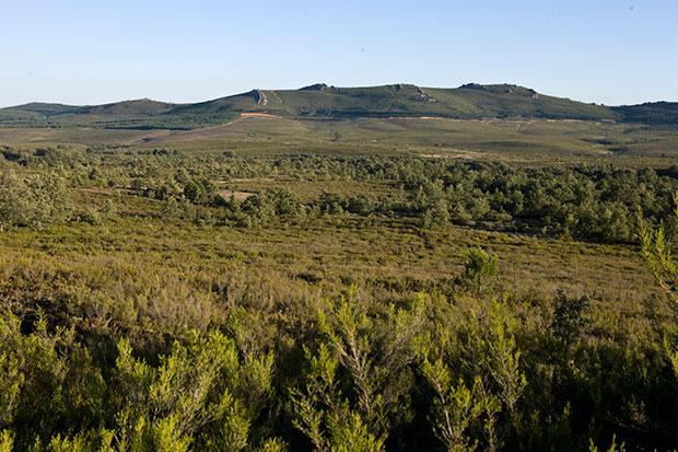 Sierra de la Culebra en Zamora