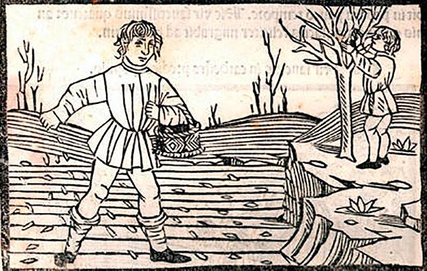 Agricultor medieval