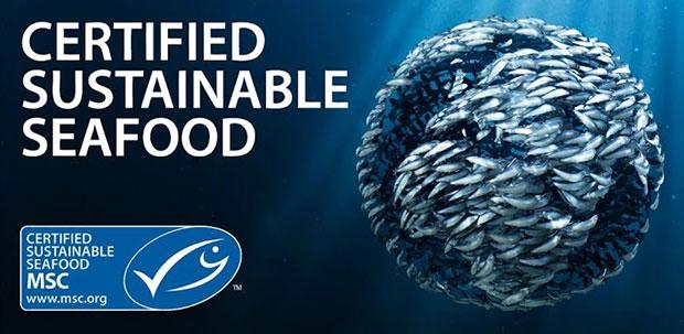 pesca sostenible MSC Marine Stewardship Council