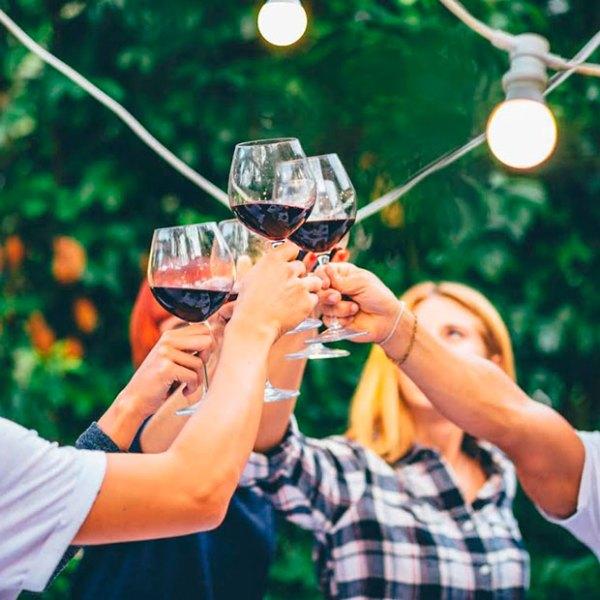 Enologia vino