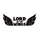 lord of the wings spacecubed design studio