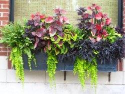 Small Of Planter Garden Boxes
