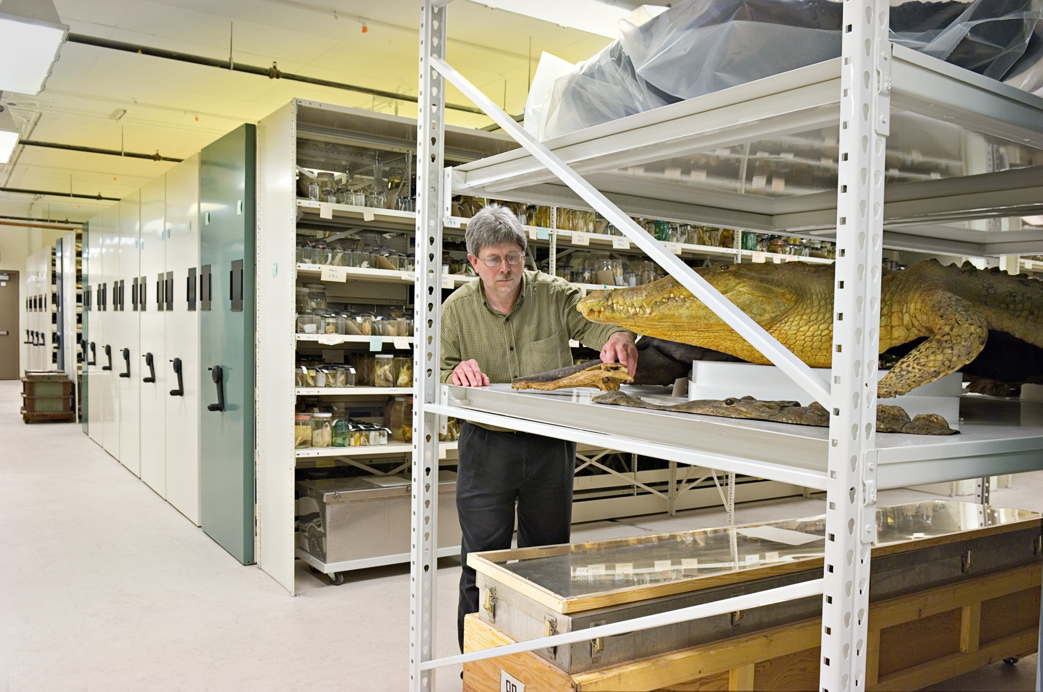 Museum And Archival Storage Spacesaver Intermountain